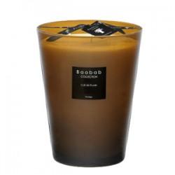 Bougie parfumée Baobab Collection - Max 24 Cuir de Russie