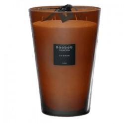 Bougie parfumée Baobab Collection - MaxiMax Cuir de Russie