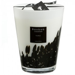 Bougie parfumée Baobab Collection - Maxi Max Feathers