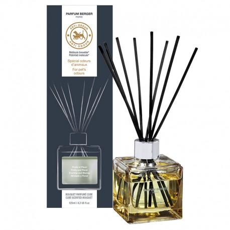 Parfum Berger - Bouquet parfumé cube Anti Odeur d'Animaux