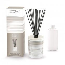 Estéban - Bouquet parfumé Rêve Blanc