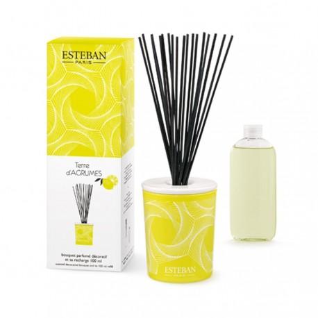 Estéban - Bouquet parfumé Terre d'Agrumes