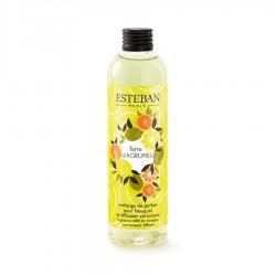 Estéban - Recharge pour bouquet parfumé Terre d'Agrumes