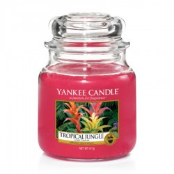 Yankee Candle - Jarre moyenne Tropical Jungle / Jungle tropicale